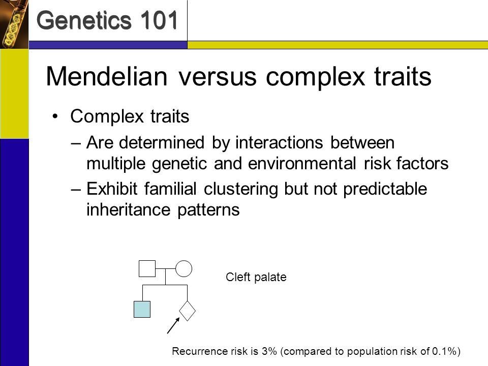 Genetics 101 Mendelian versus complex traits Complex traits –Are determined by interactions between multiple genetic and environmental risk factors –E