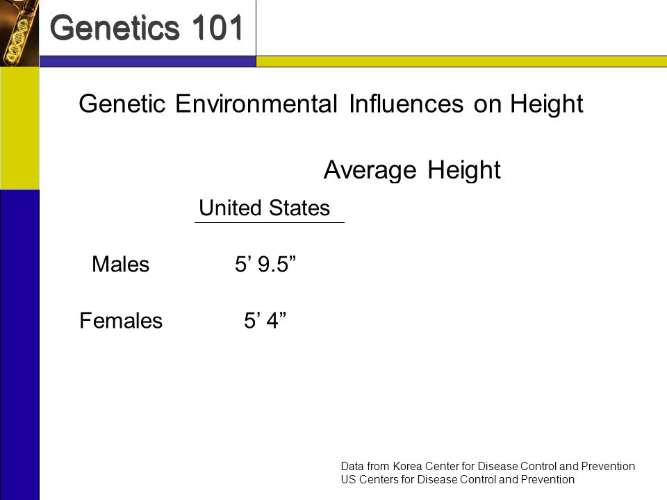 Genetics 101 Genetic Environmental Influences on Height United StatesSouth KoreaNorth Korea Males5 9.55 8.55 4.5 Females5 45 3.55 1.0 Data from Korea