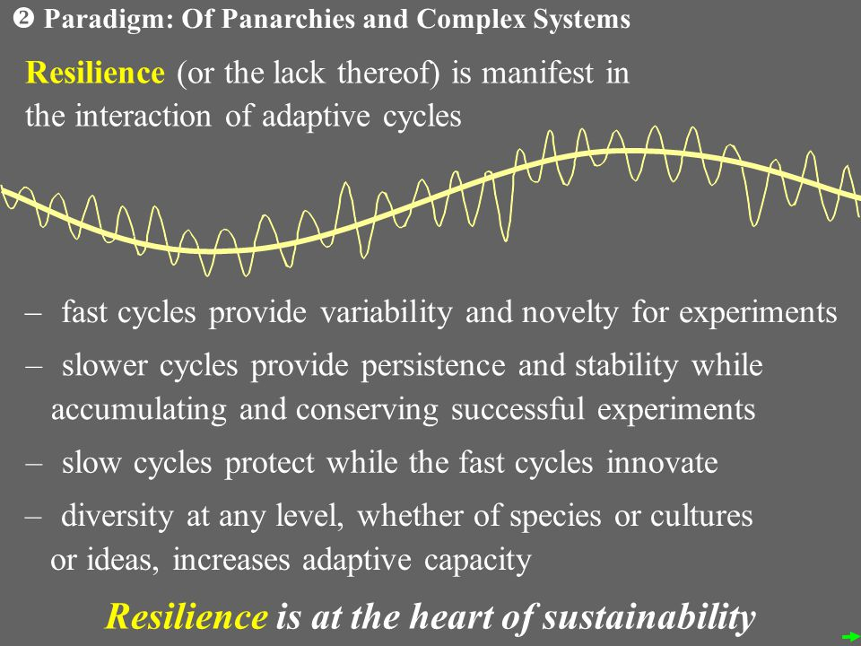 Resilience (or the lack thereof) is manifest in the interaction of adaptive cycles – fast cycles provide variability and novelty for experiments – slower cycles provide persistence and stability while accumulating and conserving successful experiments – slow cycles protect while the fast cycles innovate – diversity at any level, whether of species or cultures or ideas, increases adaptive capacity Resilience is at the heart of sustainability Paradigm: Of Panarchies and Complex Systems