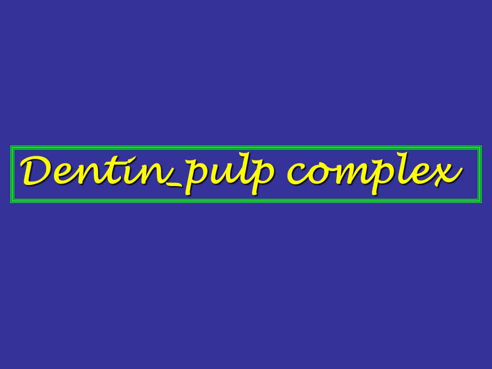 Dentin and pulp are embryologically, histologically, and functionally the same tissue and therefore are considered as a complex