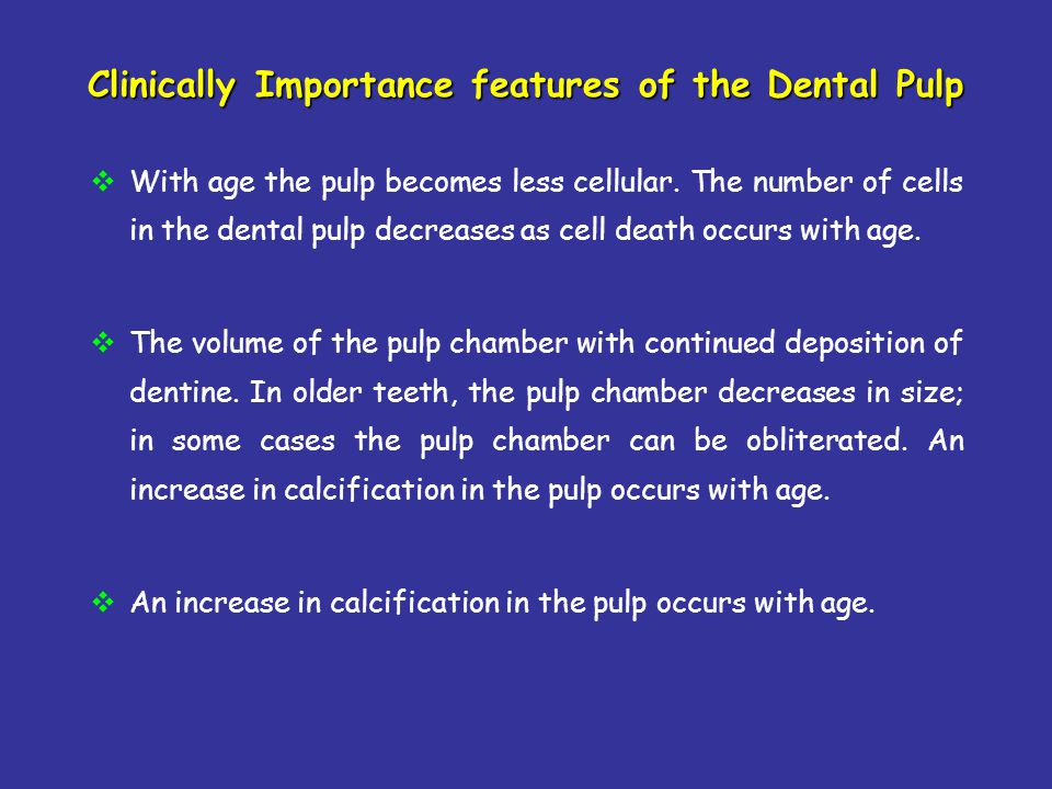 Clinically Importance features of the Dental Pulp With age the pulp becomes less cellular. The number of cells in the dental pulp decreases as cell de