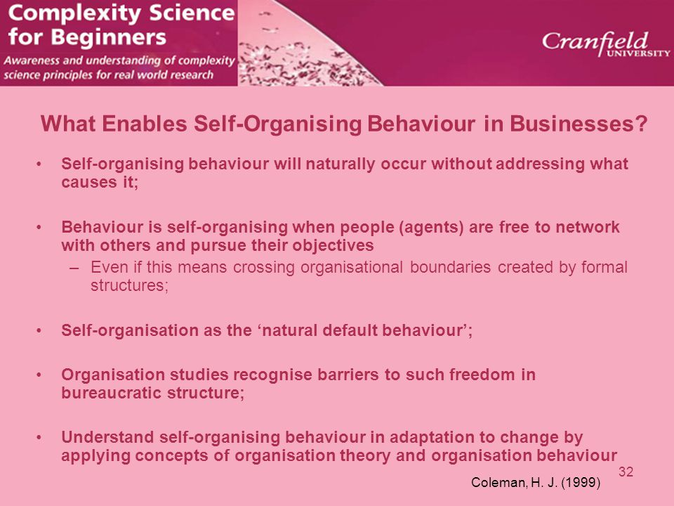 32 What Enables Self-Organising Behaviour in Businesses? Self-organising behaviour will naturally occur without addressing what causes it; Behaviour i