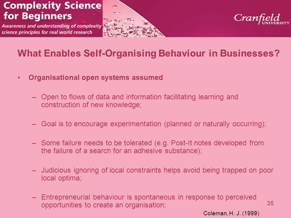 35 What Enables Self-Organising Behaviour in Businesses? Organisational open systems assumed –Open to flows of data and information facilitating learn