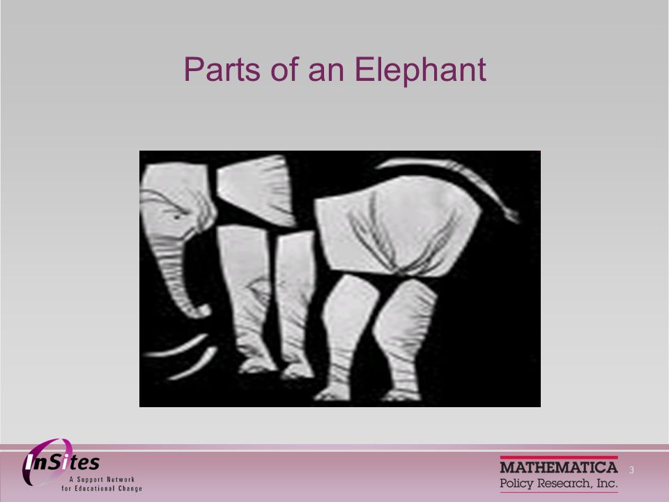 3 Parts of an Elephant