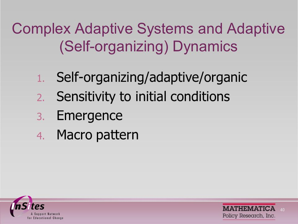 40 Complex Adaptive Systems and Adaptive (Self-organizing) Dynamics 1.