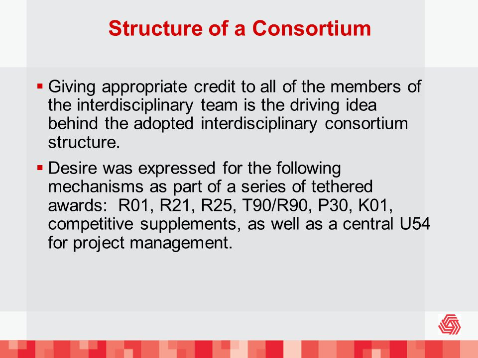 Structure of a Consortium Giving appropriate credit to all of the members of the interdisciplinary team is the driving idea behind the adopted interdisciplinary consortium structure.