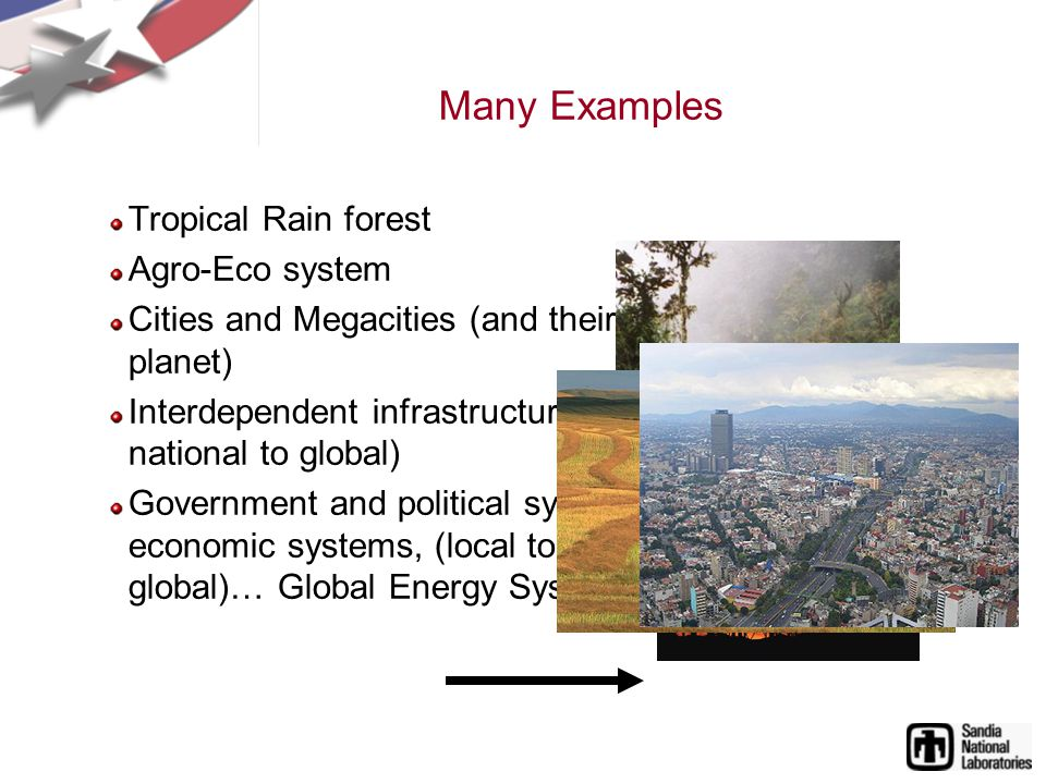 Many Examples Tropical Rain forest Agro-Eco system Cities and Megacities (and their network on the planet) Interdependent infrastructure (local to regional to national to global) Government and political systems, financial systems, economic systems, (local to regional to national to global)… Global Energy System