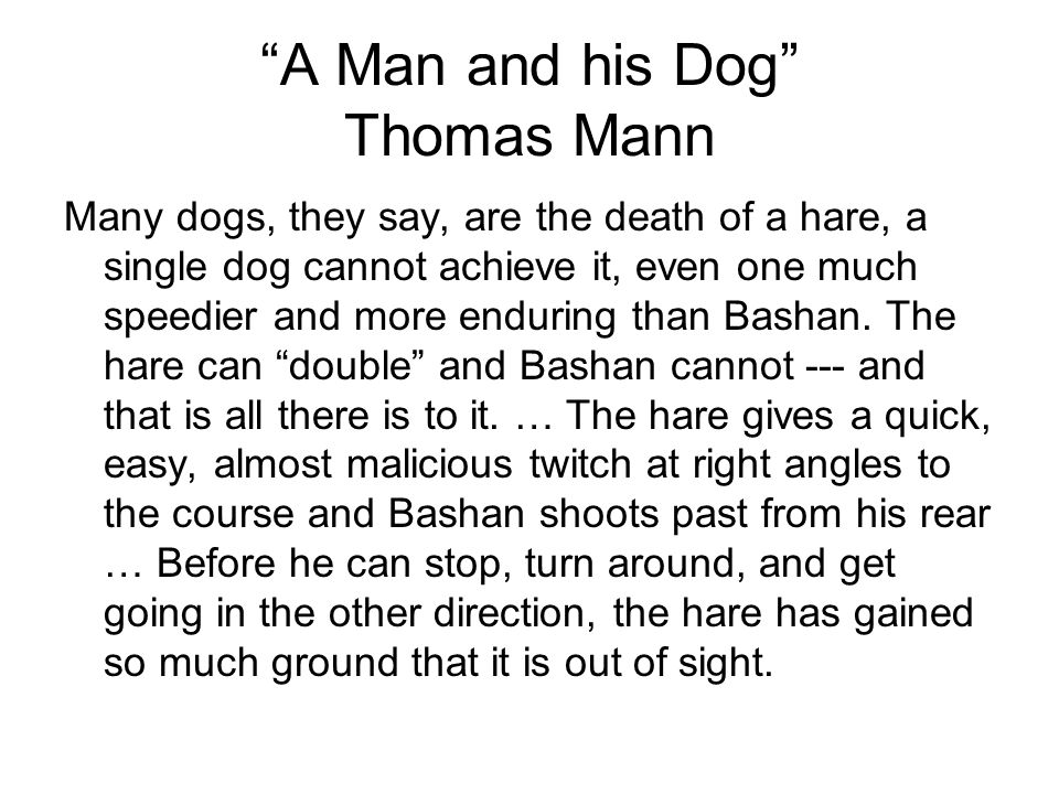A Man and his Dog Thomas Mann Many dogs, they say, are the death of a hare, a single dog cannot achieve it, even one much speedier and more enduring than Bashan.