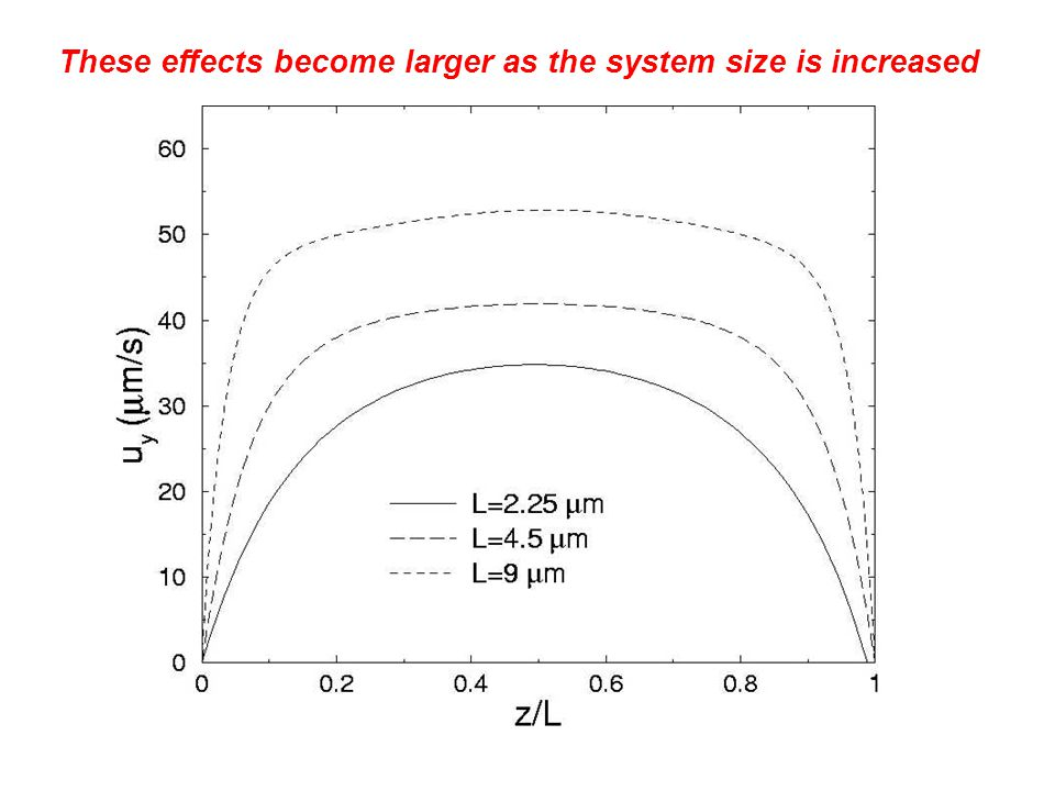These effects become larger as the system size is increased