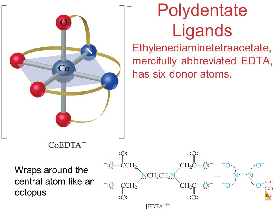 Chemistry of Coordination Compounds Polydentate Ligands Ethylenediaminetetraacetate, mercifully abbreviated EDTA, has six donor atoms. Wraps around th