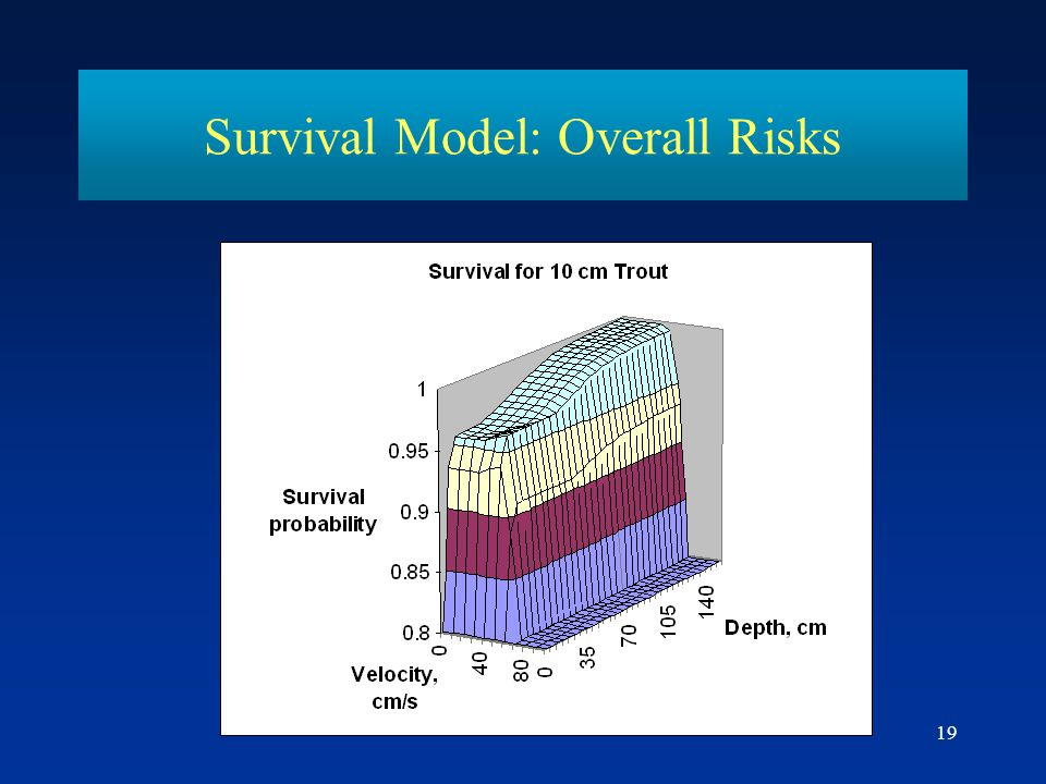 19 Survival Model: Overall Risks