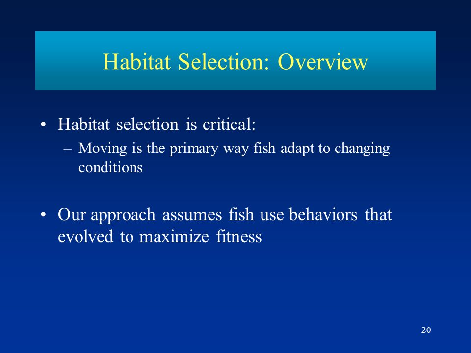 20 Habitat Selection: Overview Habitat selection is critical: –Moving is the primary way fish adapt to changing conditions Our approach assumes fish u