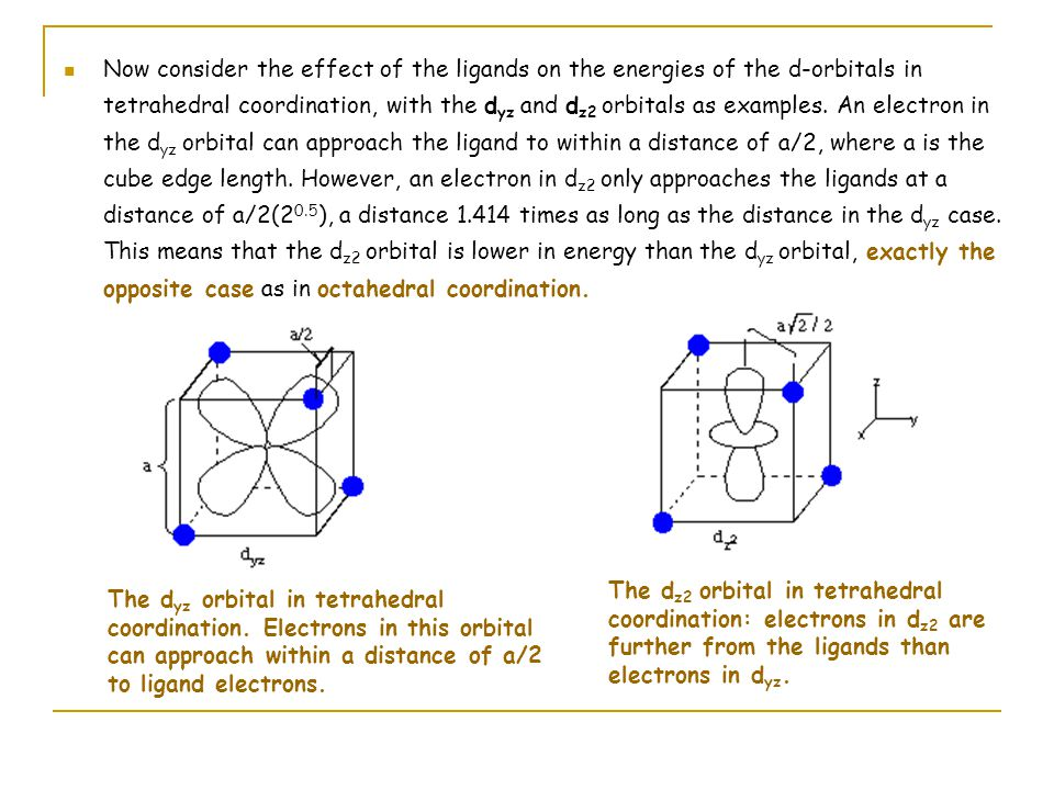 The d xz and d xy orbitals behave the same way as d yz, and d x2-y2 behaves the same way as d z2.