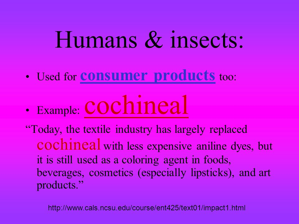 Humans & insects: Used for consumer products too: Example: cochineal Today, the textile industry has largely replaced cochineal with less expensive an