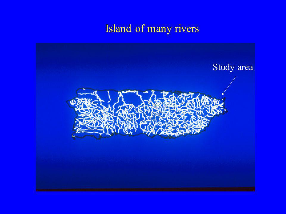 Island of many rivers Study area