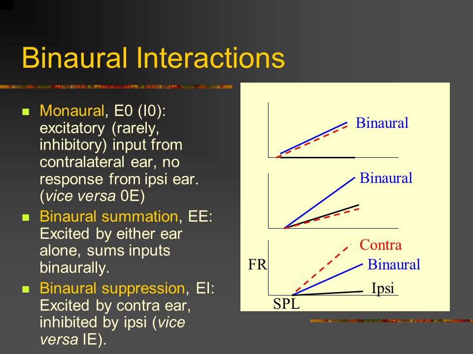 Binaural Interactions Monaural, E0 (I0): excitatory (rarely, inhibitory) input from contralateral ear, no response from ipsi ear.