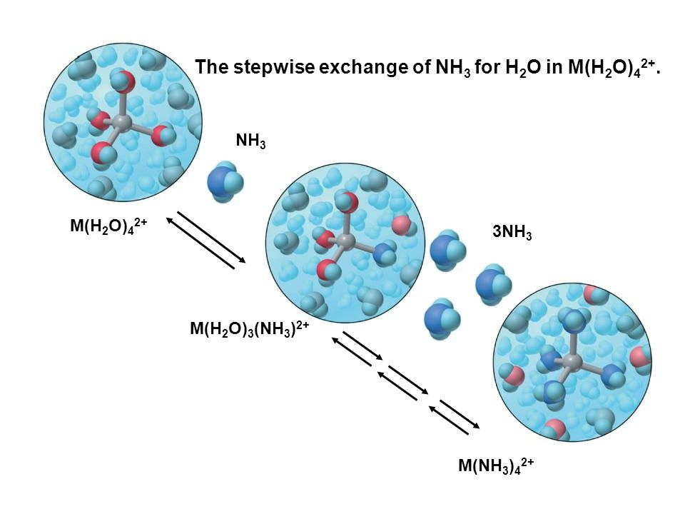 M(H 2 O) 4 2+ M(H 2 O) 3 (NH 3 ) 2+ M(NH 3 ) 4 2+ NH 3 3NH 3 The stepwise exchange of NH 3 for H 2 O in M(H 2 O) 4 2+.