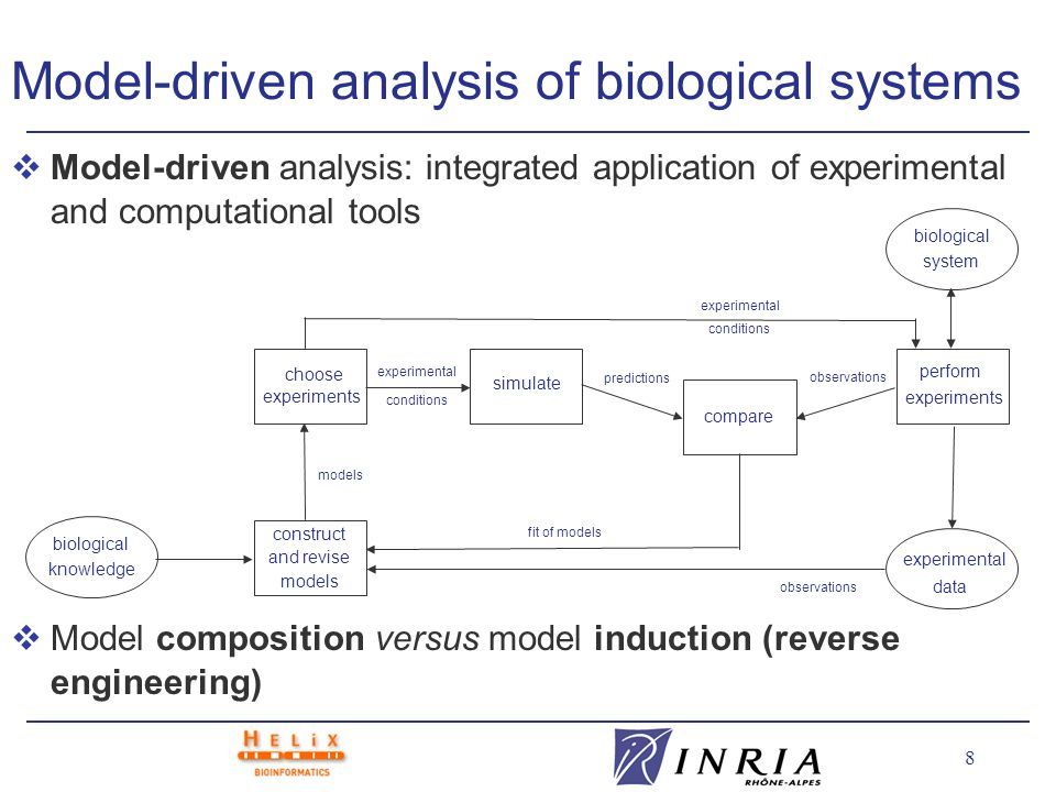 39 Beyond modeling and simulation vIntegration of modeling and simulation with other computational and experimental tools: l Biological knowledge and databases l Selection of discriminatory experiments l Validation of model predictions with experimental data choose experiments simulate compare perform experiments construct and revise models predictions observations experimental conditions observations fit of models models experimental conditions biological system biological knowledge