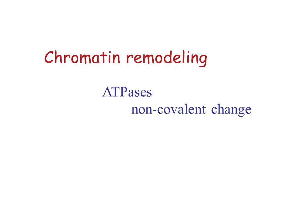 Lecture outline Types of chromatin remodelers complexes protein domains Activities of chromatin remodelers on chromatin in the organism