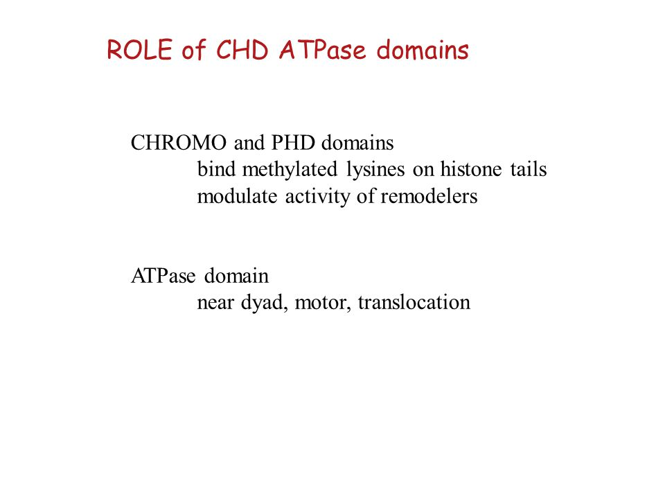 CHROMO and PHD domains bind methylated lysines on histone tails modulate activity of remodelers ATPase domain near dyad, motor, translocation ROLE of