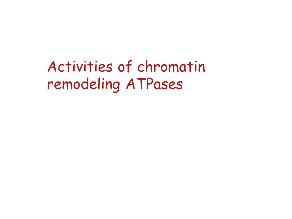 Activities of chromatin remodeling ATPases