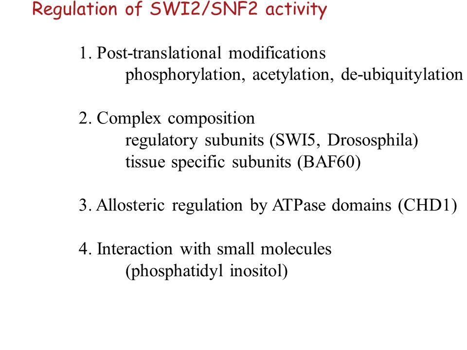 Regulation of SWI2/SNF2 activity 1. Post-translational modifications phosphorylation, acetylation, de-ubiquitylation 2. Complex composition regulatory