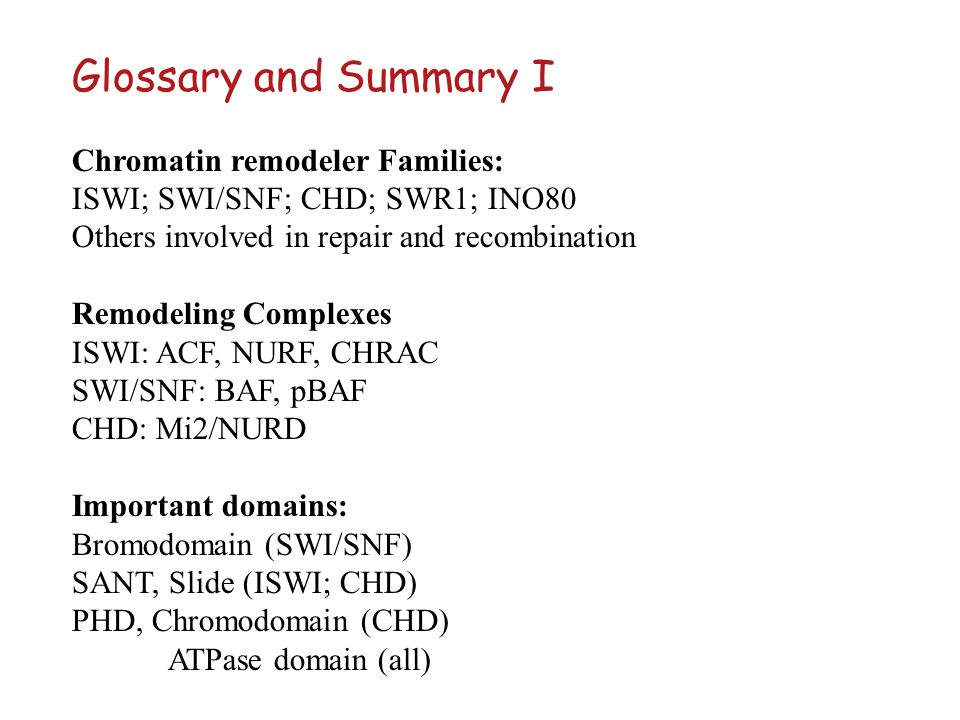Glossary and Summary I Chromatin remodeler Families: ISWI; SWI/SNF; CHD; SWR1; INO80 Others involved in repair and recombination Remodeling Complexes