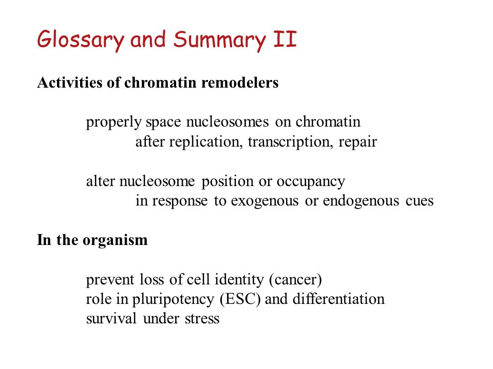Glossary and Summary II Activities of chromatin remodelers properly space nucleosomes on chromatin after replication, transcription, repair alter nucl
