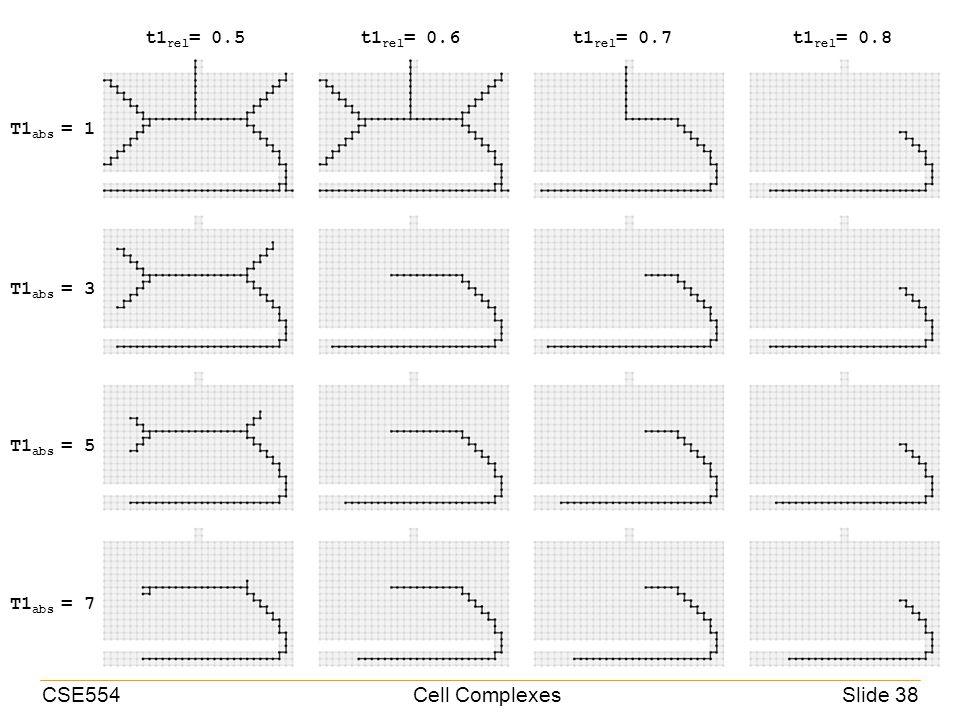 CSE554Cell ComplexesSlide 38 t1 rel = 0.5t1 rel = 0.6t1 rel = 0.7t1 rel = 0.8 T1 abs = 1 T1 abs = 3 T1 abs = 5 T1 abs = 7