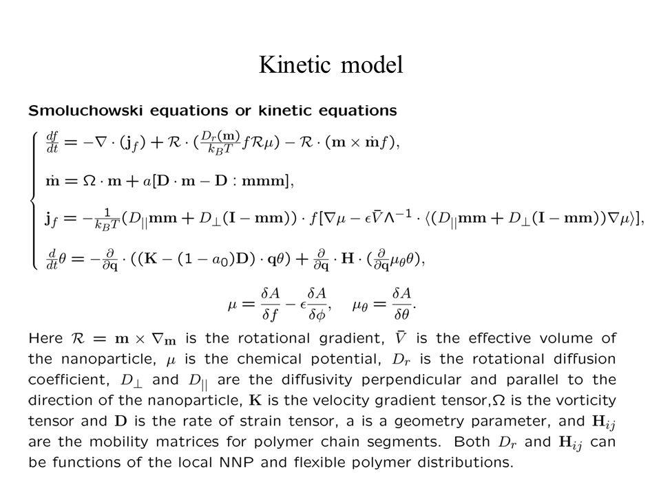 Kinetic model