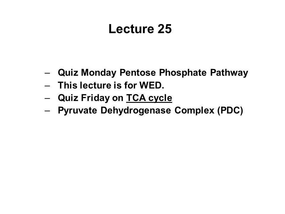 Lecture 25 –Quiz Monday Pentose Phosphate Pathway –This lecture is for WED. –Quiz Friday on TCA cycle –Pyruvate Dehydrogenase Complex (PDC)