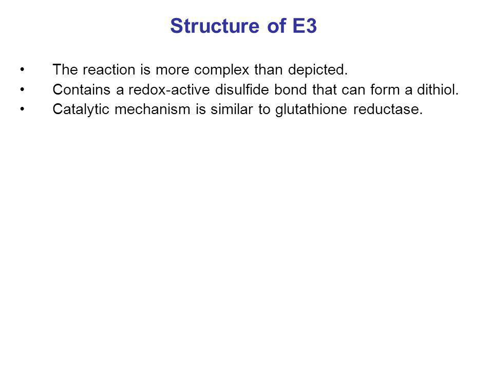 Structure of E3 The reaction is more complex than depicted. Contains a redox-active disulfide bond that can form a dithiol. Catalytic mechanism is sim