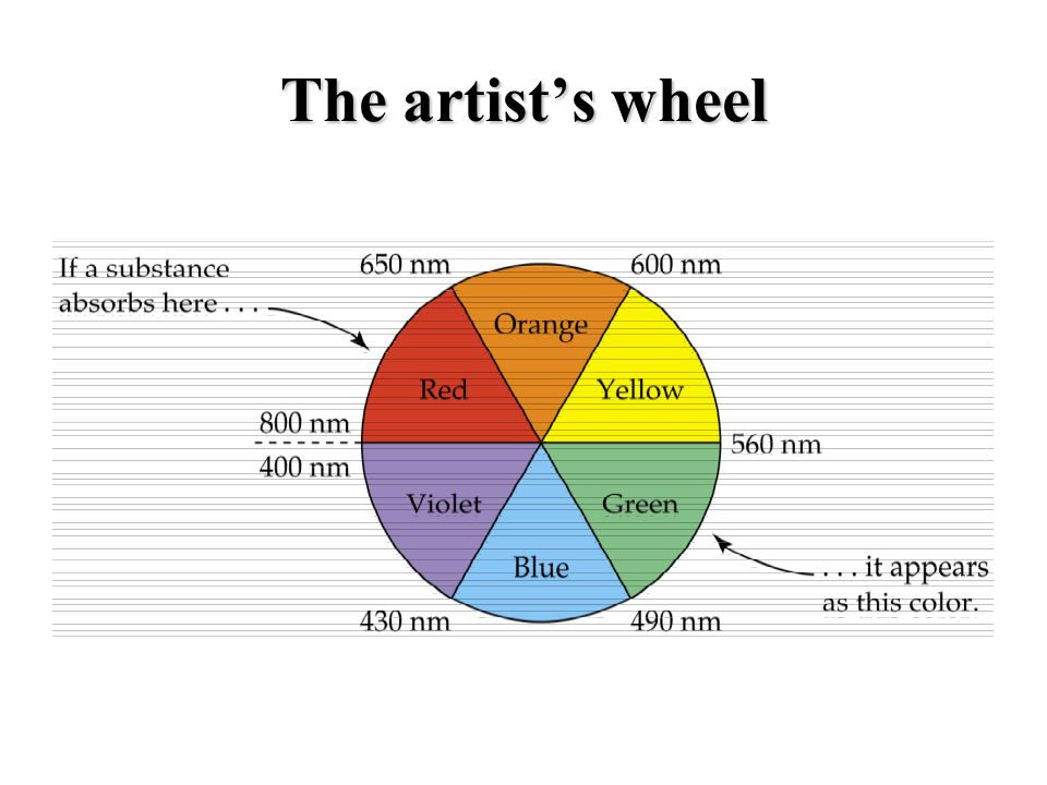 The artists wheel