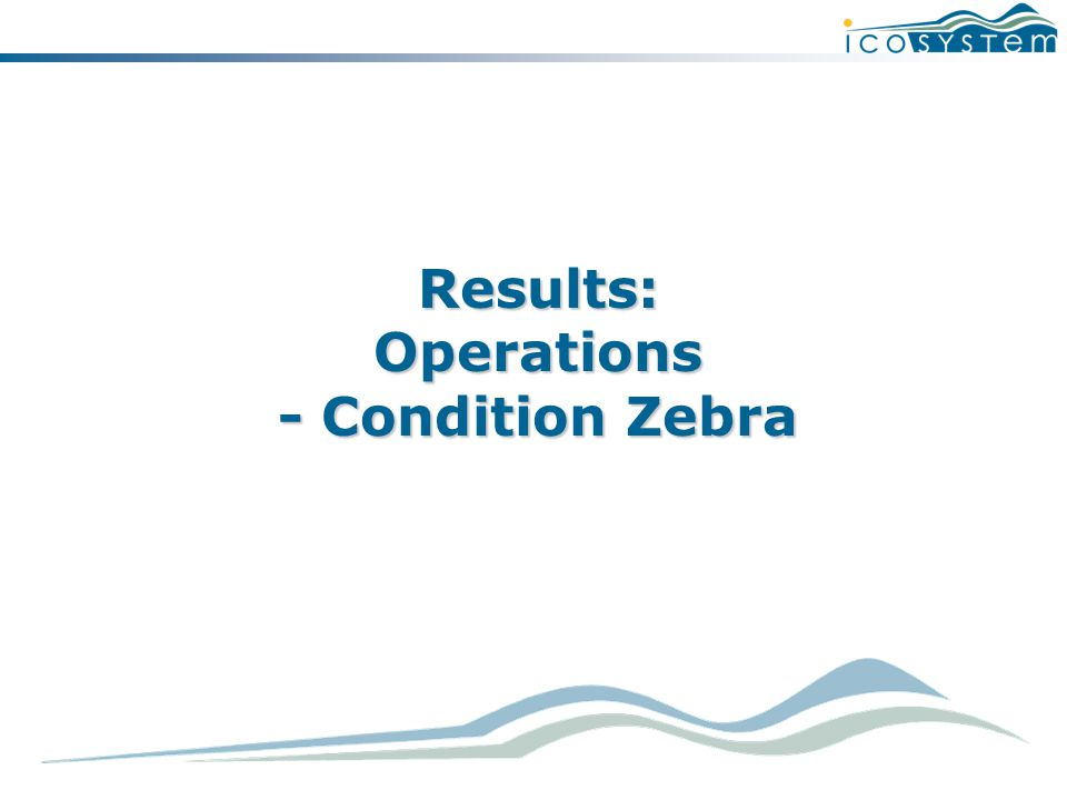 Results: Operations - Condition Zebra