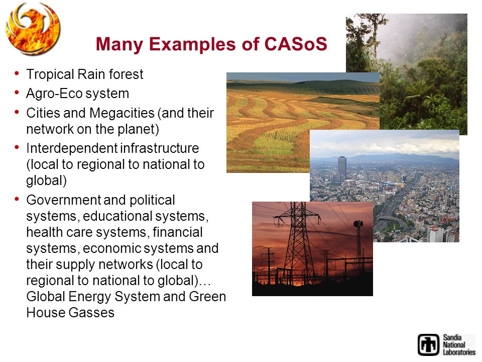 Many Examples of CASoS Tropical Rain forest Agro-Eco system Cities and Megacities (and their network on the planet) Interdependent infrastructure (local to regional to national to global) Government and political systems, educational systems, health care systems, financial systems, economic systems and their supply networks (local to regional to national to global)… Global Energy System and Green House Gasses