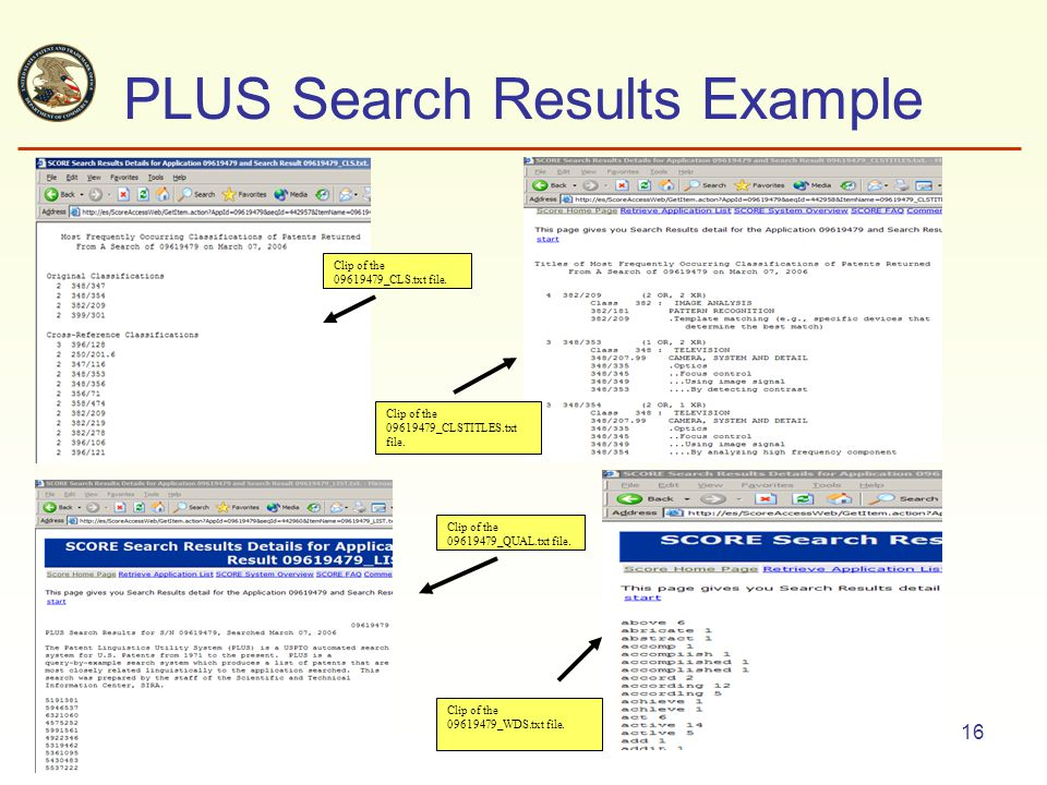 16 PLUS Search Results Example Clip of the 09619479_CLS.txt file.