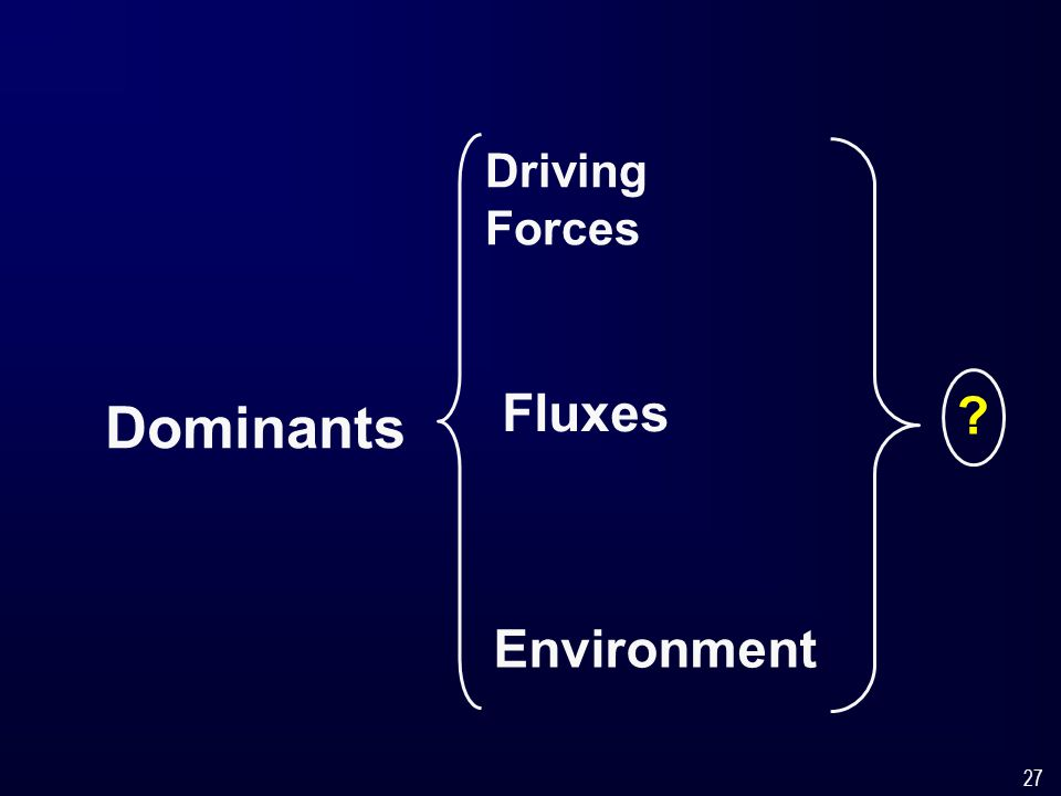 27 Dominants Driving Forces Fluxes Environment