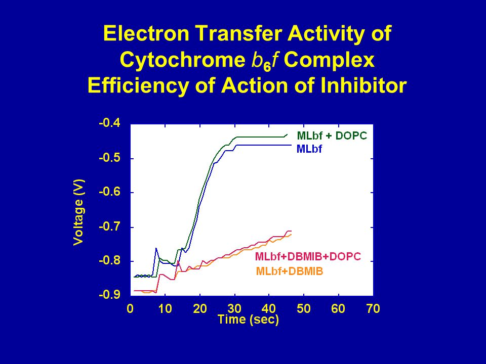 Electron Transfer Activity of Cytochrome b 6 f Complex Efficiency of Action of Inhibitor