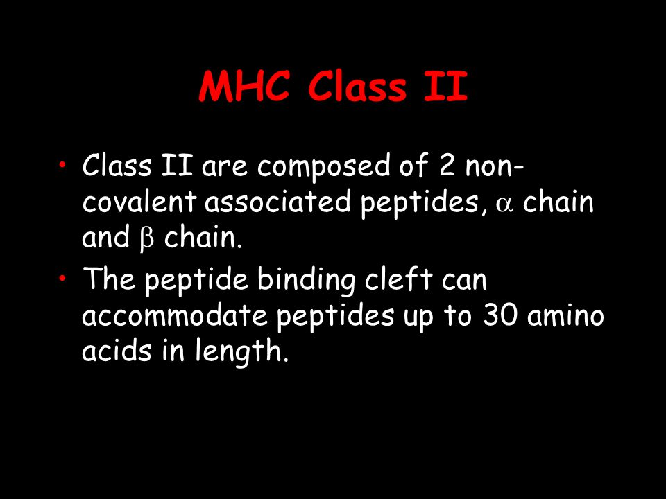 MHC Class II Class II are composed of 2 non- covalent associated peptides, chain and chain.