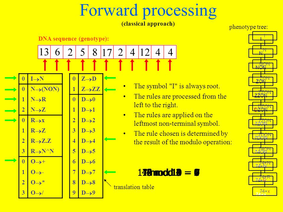 Forward processing (classical approach) 0 I N 0 Z D 0 N (NON) 1 Z ZZ 1 N R 0 D 0 2 N Z 1 D 1 0 R x 2 D 2 1 R Z 3 D 3 2 R Z.Z 4 D 4 3 R N^N 5 D 5 0 O + 6 D 6 1 O - 7 D 7 2 O * 8 D 8 3 O / 9 D 9 phenotype tree: translation table DNA sequence (genotype): The symbol I is always root.