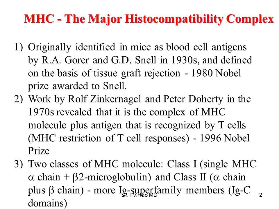 Major Histocompatibility complex (MHC) The Major Histocompatibility complex (MHC) is a large genomic region or gene family found in most vertebrates.