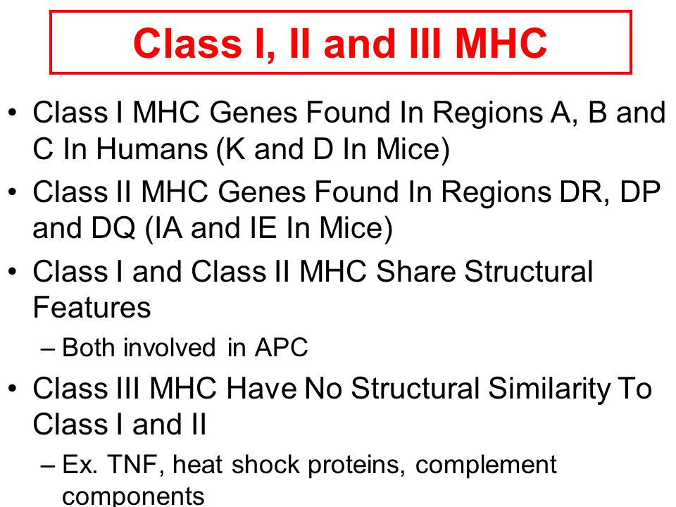 MHC is represented … In man and mouse, as in most species, each class of MHC is represented by more than one locus(polygeny), in man these are called HLA for Human Leucocyte Antigen.