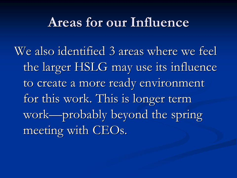 Areas for our Influence We also identified 3 areas where we feel the larger HSLG may use its influence to create a more ready environment for this work.