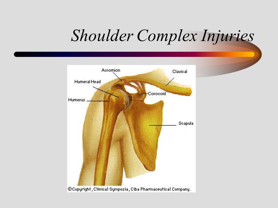 Shoulder Complex Injuries