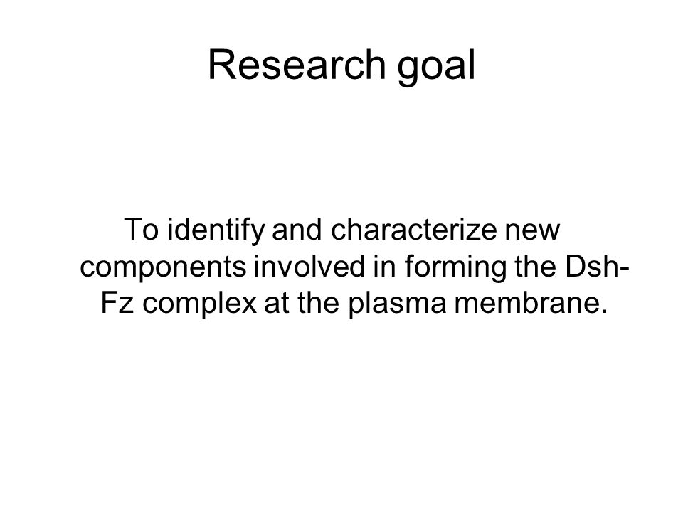 Research goal To identify and characterize new components involved in forming the Dsh- Fz complex at the plasma membrane.
