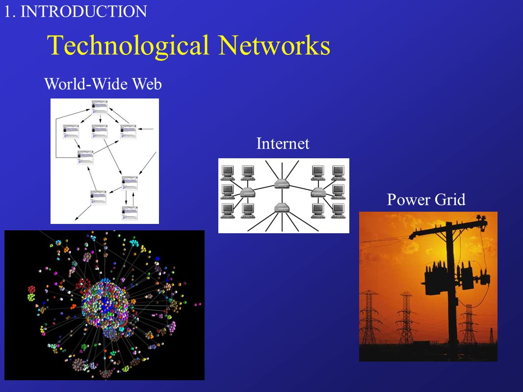 1. INTRODUCTION Technological Networks World-Wide Web Power Grid Internet