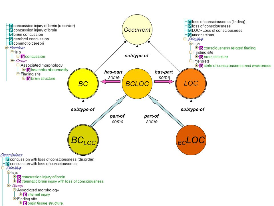 BC LOC Occurrent BCLOC has-part some BC LOC part-of some subtype-of