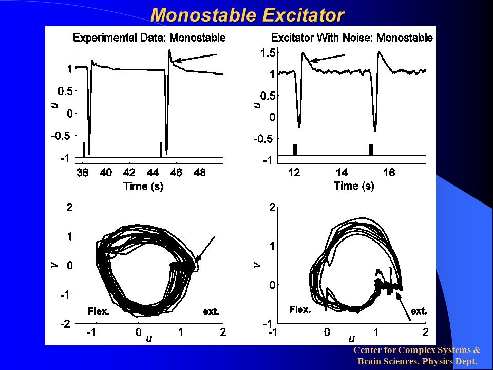 Center for Complex Systems & Brain Sciences, Physics Dept. Monostable Excitator