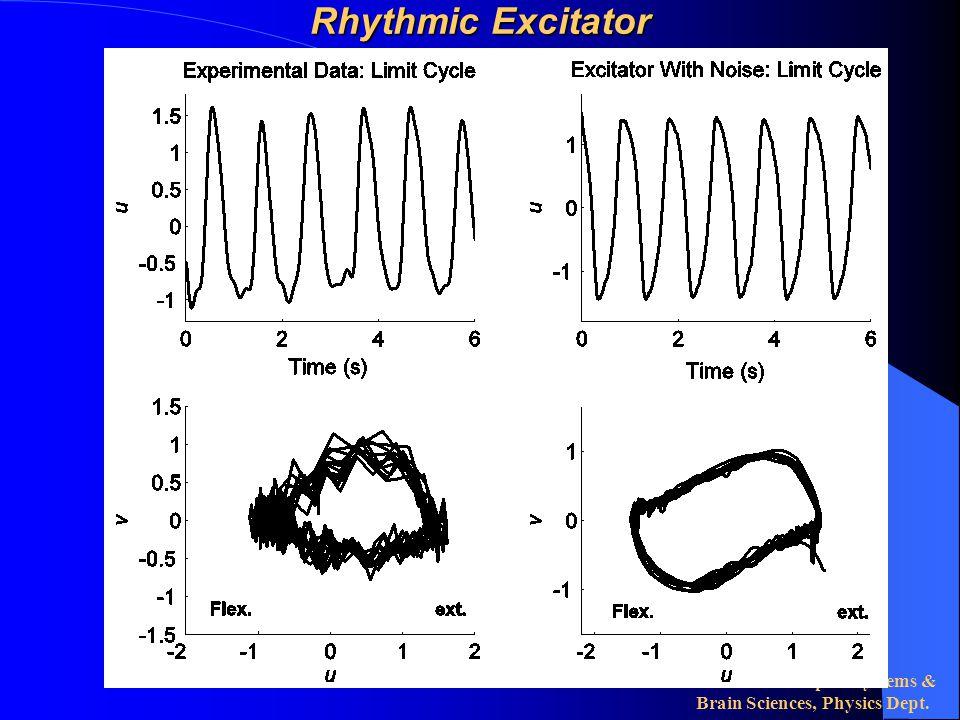 Center for Complex Systems & Brain Sciences, Physics Dept. Rhythmic Excitator