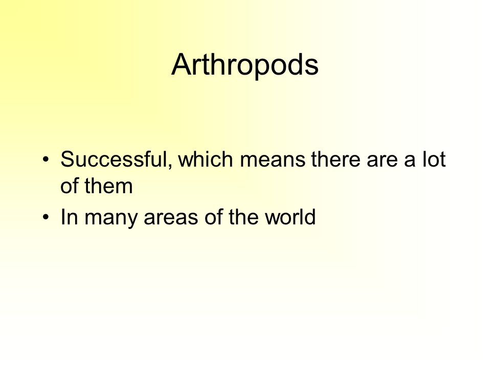 Arthropods Successful, which means there are a lot of them In many areas of the world